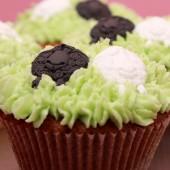 Saint George's Day Cupcake