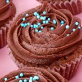 24 Mini Cocoa Cupcakes